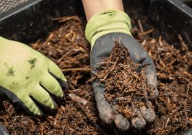 Le tri et le compostage